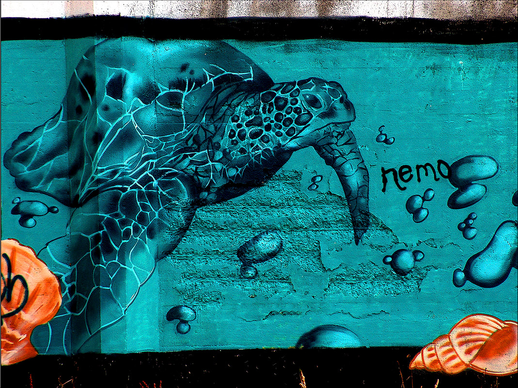 graffiti,nemo